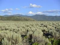 Buildable 5.75 Acres In Costilla : Fort Garland : Costilla County : Colorado