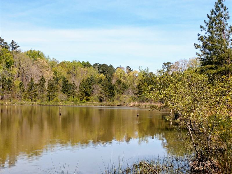 Farm With 4 Acre Lake Near Macon : Macon : Jones County : Georgia
