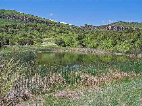 Moore Ranch : Montrose : Colorado