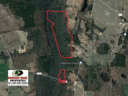 115 Acres of Hunting Land For Sale : Maxton : Robeson County : North Carolina