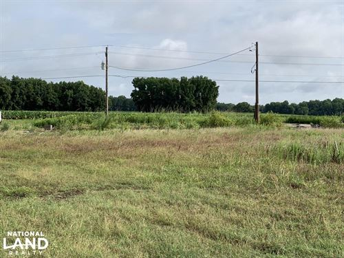 Harrell Store Rd, Cleared Lot, Sh : Kenly : Wilson County : North Carolina