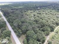 Arcadia SW Hull Country Homesite : Arcadia : Desoto County : Florida