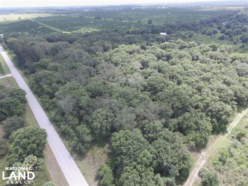Arcadia SW Hull Country Homesite : Arcadia : Desoto County : Florida