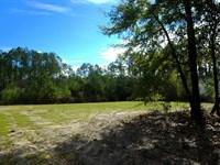 131 Acres DE Funiak Springs : De Funiak Springs : Walton County : Florida