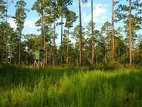 Natural Bridge Plantation, DE : De Funiak Springs : Walton County : Florida