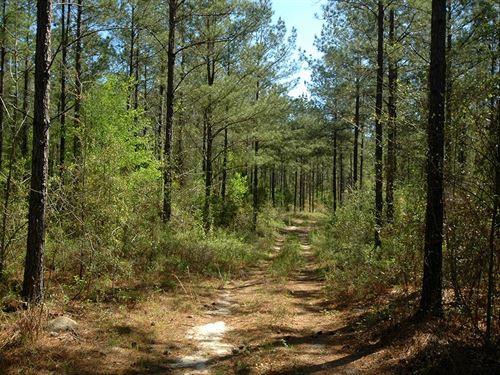 173 Acres Lawrence Road Jackson : Marianna : Jackson County : Florida