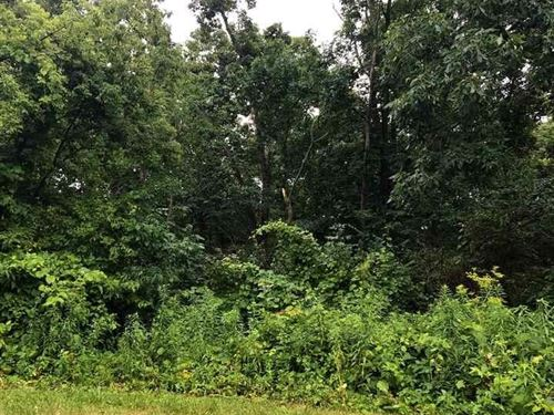 Private Wooded Residential Lot : Galena : Jo Daviess County : Illinois