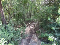 Georges Lake Area 7 : Palatka : Putnam County : Florida