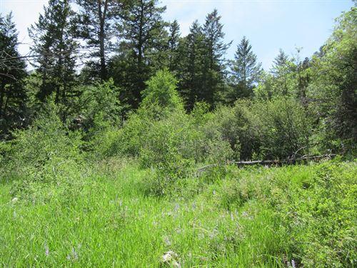 Rocky Mountain Recreational Land : Gypsum : Garfield County : Colorado