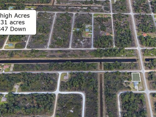 .31 Acre Corner Lot On Paved Road : Lehigh Acres : Lee County : Florida