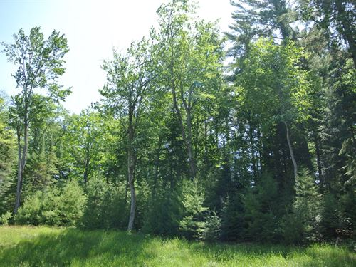 179790, Eagle Watch Acreage : Saint Germain : Vilas County : Wisconsin