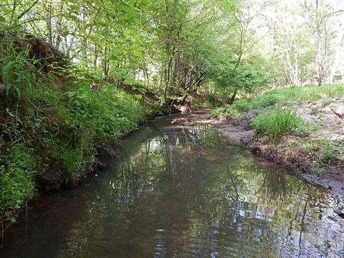 Dual Creek Frontage & Hunting : Eatonton : Putnam County : Georgia