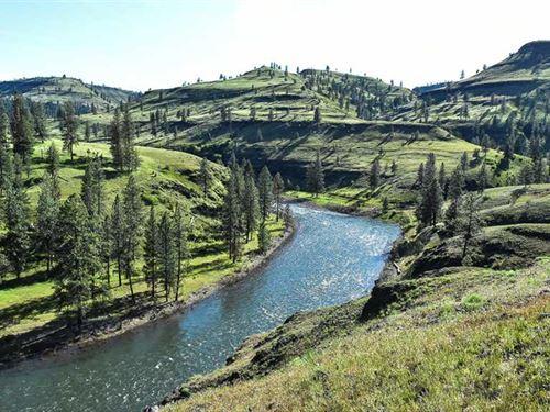 585 Acres Land on North Fork John : Ritter : Grant County : Oregon