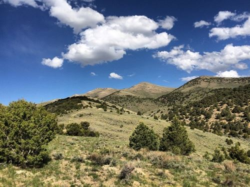 2.27 Acres On Murdock Mountain : Montello : Elko County : Nevada