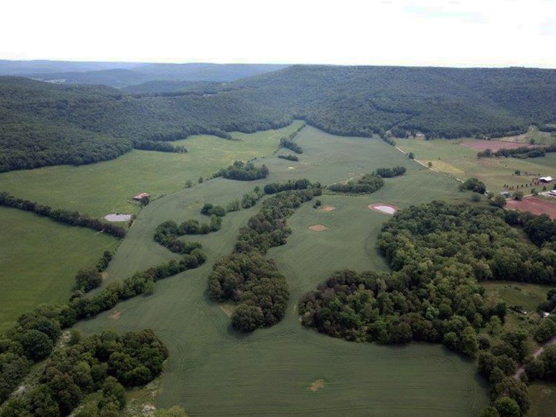 185 Acre Beautiful Farm : McMinnville : Warren County : Tennessee