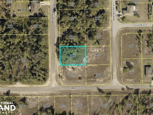 Fantastic Lehigh Acres Lot : Lehigh Acres : Lee County : Florida