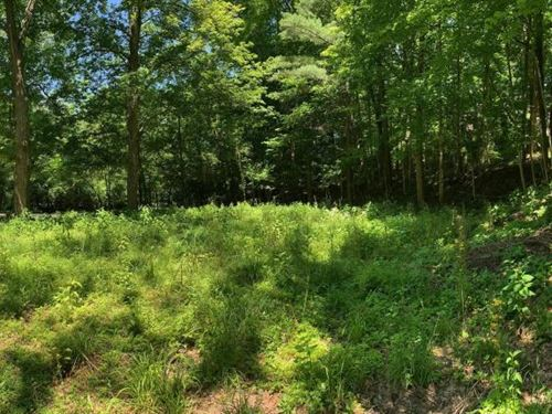 Prime Homesite Near Bolander Woods : Indianapolis : Marion County : Indiana