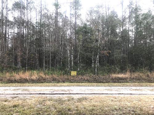 Flagler Estates Mobiles Ok $199 Dn : Hastings : Saint Johns County : Florida