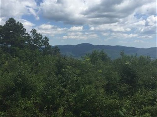 Mountain Land, Hunting/Prepper : Weaverville : Buncombe County : North Carolina