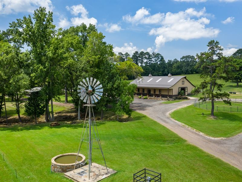 East Texas Investment Land Equine : Whitehouse : Smith County : Texas