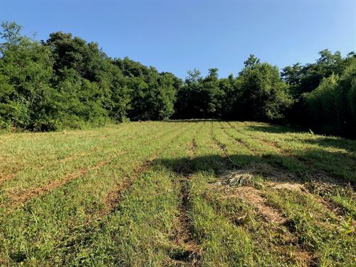 Building Lot For Sale in Floyd VA : Copper Hill : Floyd County : Virginia