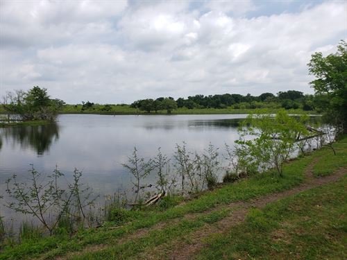 Beautiful Land in Tx, Small Pond : Dale : Caldwell County : Texas