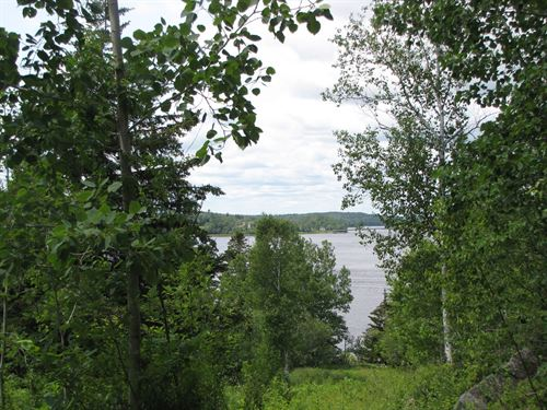 Woodruff Cove Land Lot Machiasport : Machiasport : Washington County : Maine