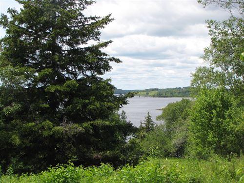 Coastal Maine Land For Sale : Machiasport : Washington County : Maine