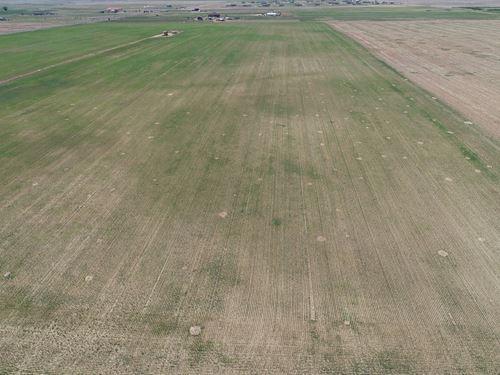 Brighton Farms 35 Acre Tracts : Brighton : Adams County : Colorado