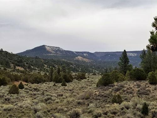 Pine Lake Ranch : Panguitch : Garfield County : Utah