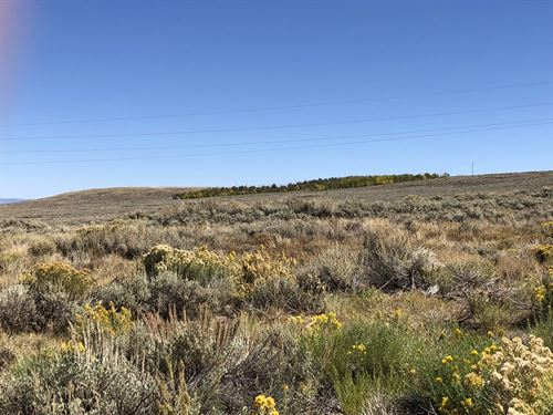 Rabbit Ears 35 Acre Tract : Steamboat Springs : Jackson County : Colorado