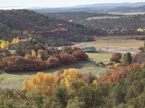268 Acres in Bayfield, Colorado : Bayfield : La Plata County : Colorado