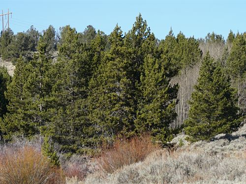 Slate Creek Gorge : Lander : Fremont County : Wyoming