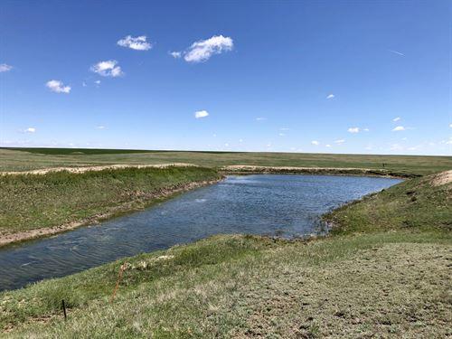 Arriba Grassland : Arriba : Lincoln County : Colorado