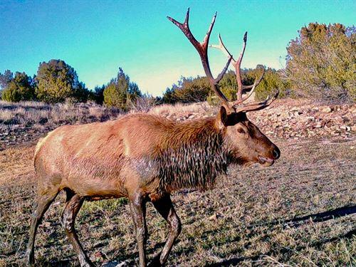Line Shack Ranch : Kim : Las Animas County : Colorado