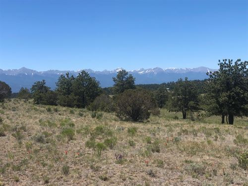 Big O Ranch, Lot : Westcliffe : Custer County : Colorado