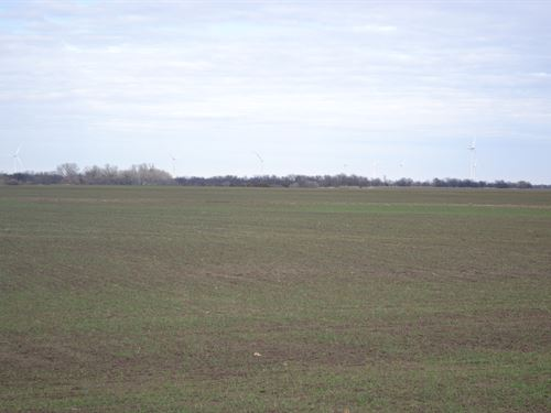 Sumner Farm 140 : South Haven : Sumner County : Kansas