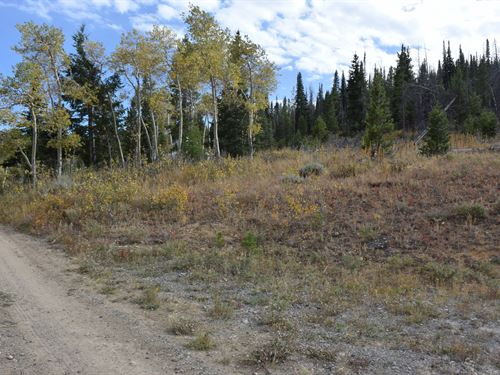 Pines at Elk Ridge Estates Lot 6 : Dubois : Fremont County : Wyoming