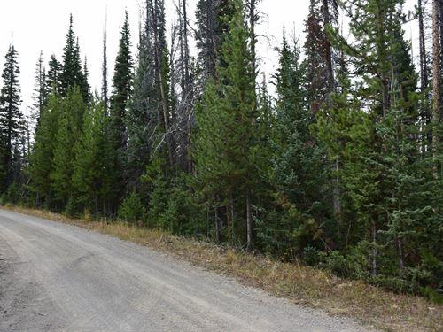 Pines at Elk Ridge Estates Lot 18 : Dubois : Fremont County : Wyoming
