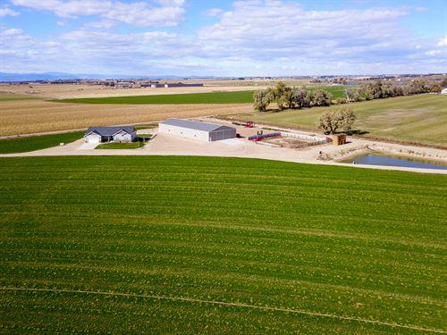 Greeley Irrigated Farm : Greeley : Weld County : Colorado