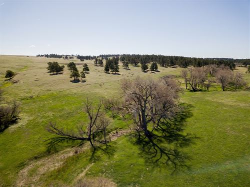 Wolf Creek Ranch at Kiowa : Kiowa : Elbert County : Colorado