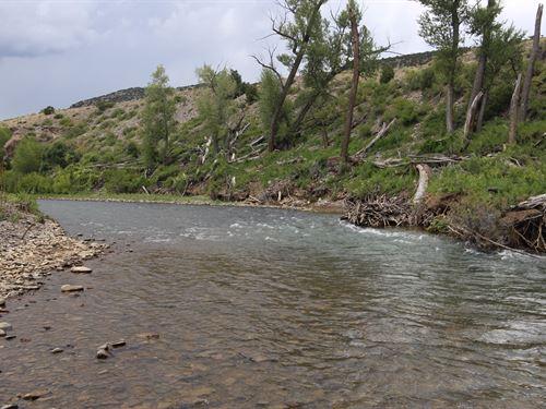Predator Acres : La Jara : Conejos County : Colorado