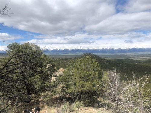 Not For City Kids : Westcliffe : Custer County : Colorado