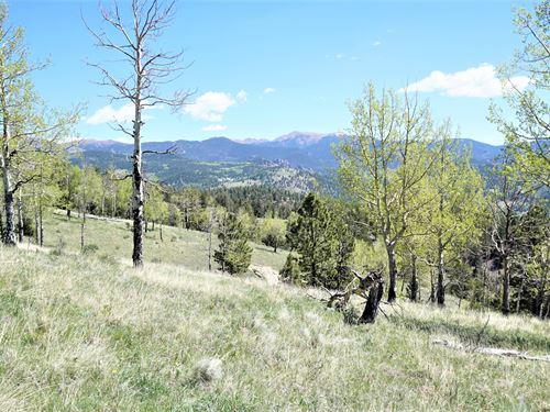 Big Views at Bradley Ranch : Victor : Teller County : Colorado