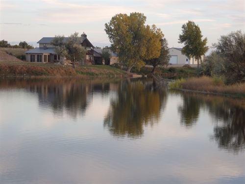 Farm Fresh Acres : Wheatland : Platte County : Wyoming