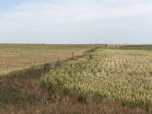 Northwest Sherman County : Goodland : Sherman County : Kansas