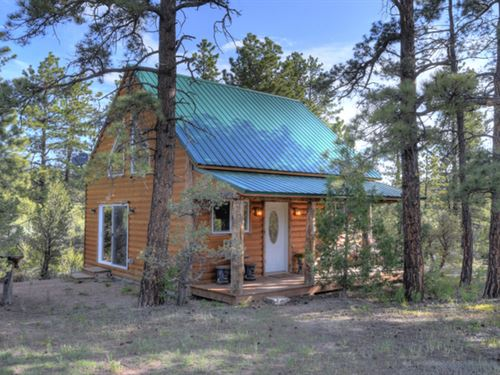 Cozy Cabin : Cotopaxi : Fremont County : Colorado