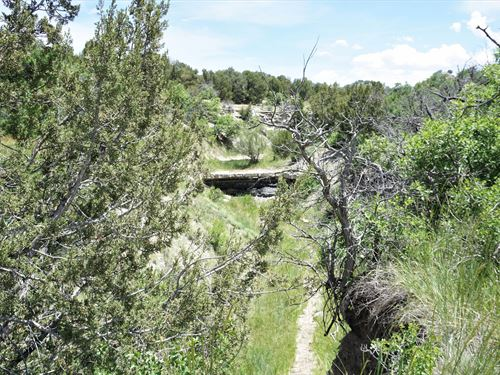 Hatchet Ranch-Parcel 4 : Pueblo : Colorado