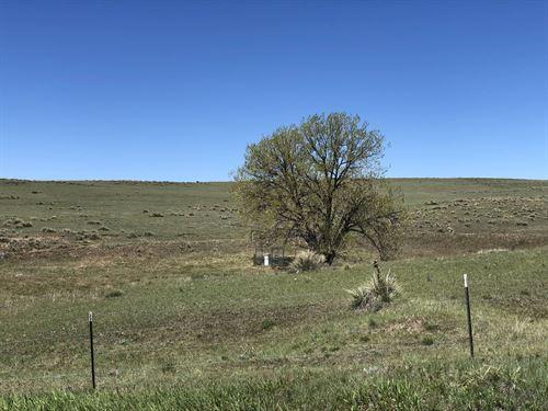 Big Sandy Overlook Ranches : Ramah : Elbert County : Colorado