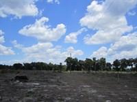 140 Acres in Hawthorne, FL : Hawthorne : Alachua County : Florida